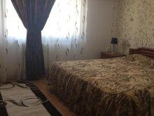 Accommodation Brebeni, Sophy Apartment