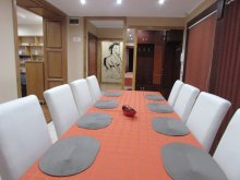 Accommodation Berkenye, Viki Guesthouse