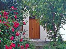 Accommodation Șeușa, Horea Apartment