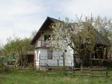 Accommodation Racoș, Cseke Chalet