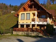 Accommodation Burduca, Tichet de vacanță, Dor de Munte B&B