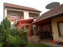 Chalet Tiszanagyfalu, Víztorony Guesthouse