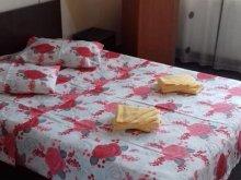 Hostel Rucăr, Hostel VIP