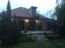 Accommodation Szigetbecse, Ráckevei Villa