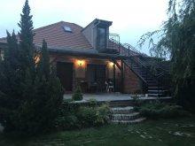 Vacation home Zagyvaszántó, Ráckevei Villa