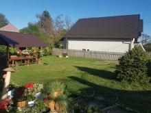 Casă de vacanță județul Suceava, Casa Carmen