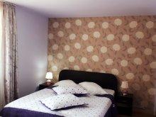 Accommodation Tohanu Nou, Tichet de vacanță, Krista Vila