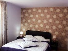 Bed & breakfast Dragoslavele, Krista Vila