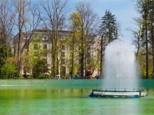 Accommodation Fieni, Grand Hotel Sofianu