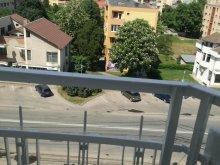Accommodation Stejeriș, Rayssa Apartment
