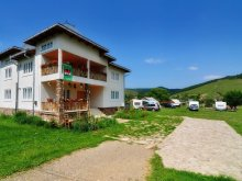 Accommodation Strâmtura, Cristiana Guesthouse & Camping
