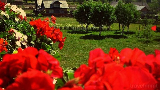 Cristiana Guesthouse & Camping Mănăstirea Humorului