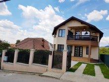 Cazare Sărata-Monteoru, Casa de vacanță David