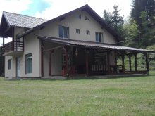 Kulcsosház Sânnicolau Român, Georgiana Kulcsosház