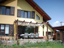 Casă de oaspeți Brașov, Casa de oaspeți Cuibul