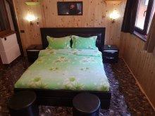 Accommodation Brebeni, Laura Apartment