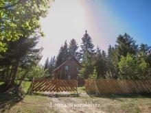 Accommodation Barajul Zetea, Laura Vacation Home
