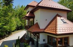 Villa near Peleș Castle, Alfinio Villa