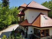 Villa Sibiciu de Sus, Tichet de vacanță, Alfinio Villa