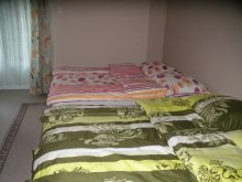 Apartman Balatonalmádi, Sunshine Apartman