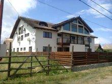 Accommodation Dunavățu de Jos, Ancora Guesthouse