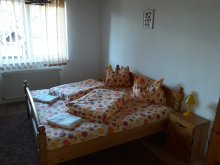Bed & breakfast Lunca (Voinești), Ovi-Tours Guesthouse