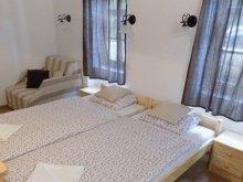 Accommodation Egyházasrádóc, Guesthouse Ninszianna