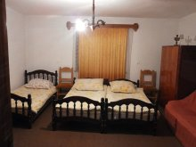 Accommodation Țagu, Anna Guesthouse