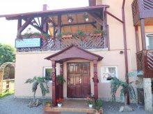 Accommodation Mănăstirea Humorului, Alexandra Guesthouse