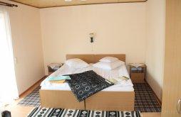Bed & breakfast Paltinu, Alexandra Guesthouse