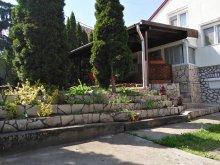 Casă de oaspeți Kiskinizs, Casa de oaspeți Holdviola