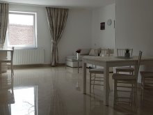 Accommodation Sepsiszentgyörgy (Sfântu Gheorghe), Casa Aisa Apartment