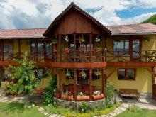 Accommodation Ocna de Jos, Éden Guesthouse