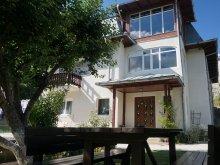Villa Movila (Niculești), Tichet de vacanță, Elisabeta Villa