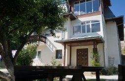 Villa Pucheni (Moroeni), Elisabeta Villa