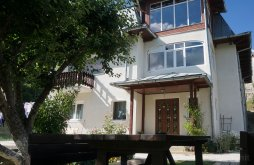 Villa Valea Oprii, Elisabeta Villa