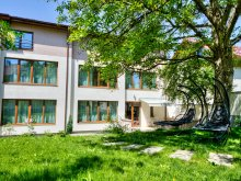 Accommodation Pleșcoi, Studio ApartCity