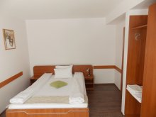 Accommodation Stoenești, Briana Vila