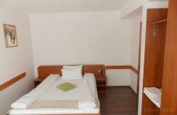 Apartman Szebenjuharos (Păltiniș), Briana Villa
