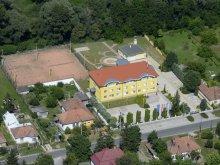 Hotel județul Győr-Moson-Sopron, Hotel Leier Business