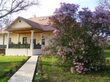 Cazare Sâncraiu, Pensiunea Kék Iringó