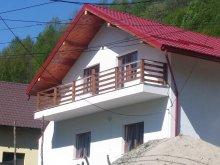 Casă de vacanță Mustești, Casa Alin