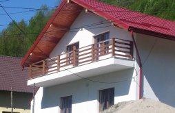Casă de vacanță Racovița, Casa Alin