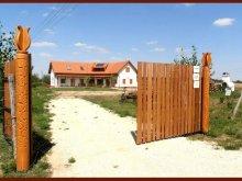 Cazare Tápiószentmárton, Casa de oaspeți Vadvirágos