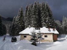 Cabană Comuna Siriu (Siriu), Cabana Pietricica