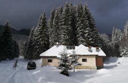 Chalet Argeș county, Pietricica Chalet