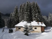 Szállás Bunești (Cotmeana), Pietricica Kulcsosház