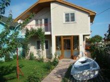 Villa Călugăreni, Irina Villa