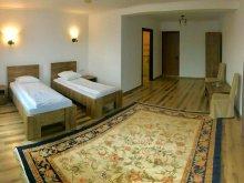 Accommodation Dobrinăuți-Hapăi, Amnar Hostel