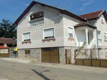 Accommodation Teliucu Inferior, Lőcsei Ildikó Guesthouse